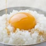 卵かけご飯 のプロフィール写真